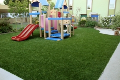 ecograss_small2