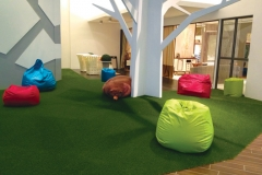ecograss_small5